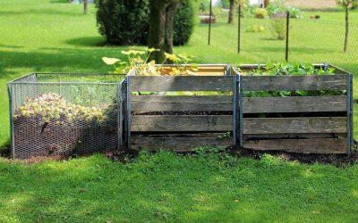 Potencia tus cultivos con un compost nutritivo y económico