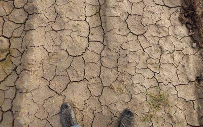 Gobierno decreta Zona de Emergencia por sequía en la región de Valparaíso